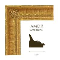 "AMDR | 6 1/4"""