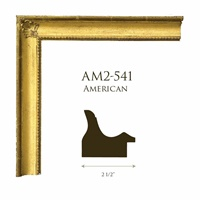 "AM2-541 | 2 1/2"""